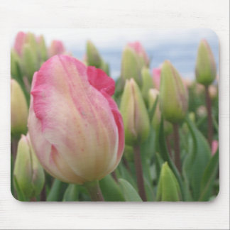 Spring Tulips Mouse Pad