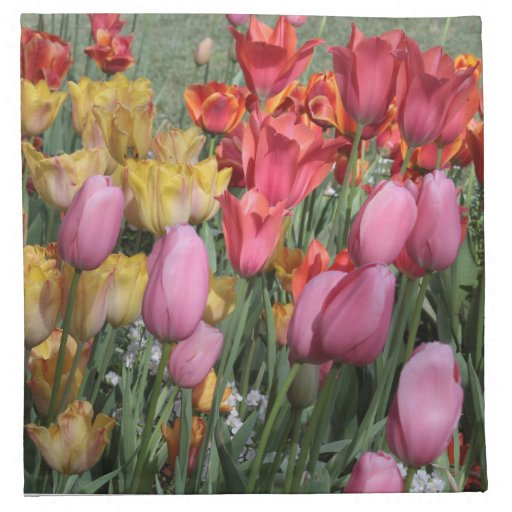 Spring Tulips Napkins
