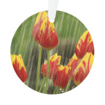 Spring Tulips Ornament