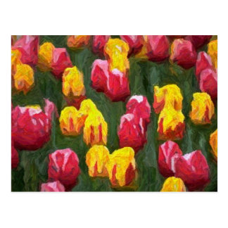 Spring Tulips Postcards
