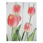 Spring Tulips Posters