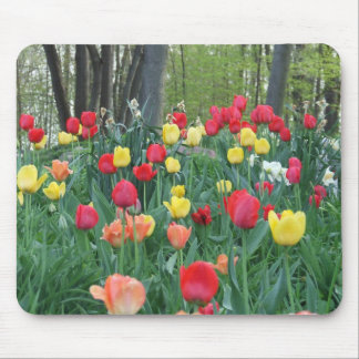 Spring Tulips Red, Yellow, Orange, Happy Spring Mouse Pad