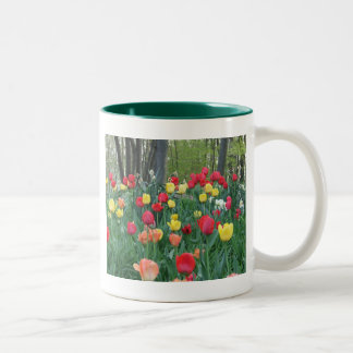 Spring Tulips Red, Yellow, Orange, Happy Spring Coffee Mug