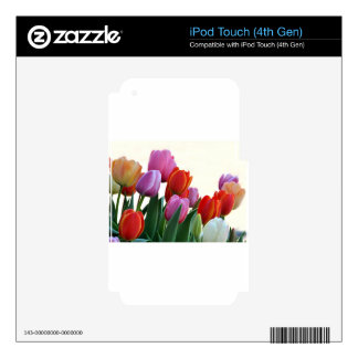 Spring Tulips Skins For iPod Touch 4G