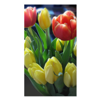 Spring Tulips Small Photo Card