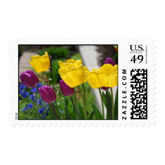 Spring Tulips Stamps