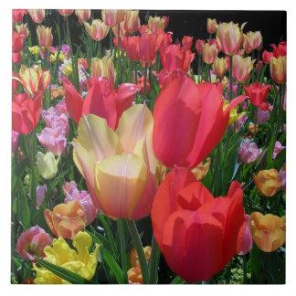 Spring Tulips Tile