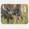 Spring Twin Fawns Nursing/Summer Bunny Baby Blanket