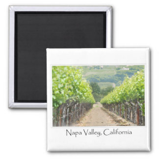 Spring Vineyard in Napa Valley California Magnet