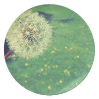 Spring Vintage Wishes Photography Melamine Plate
