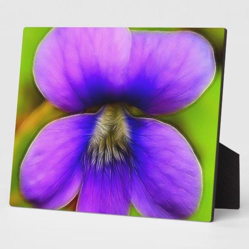 Spring Violet - Purple Power! Photo Plaque