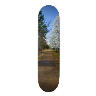 Spring Walk Skateboard