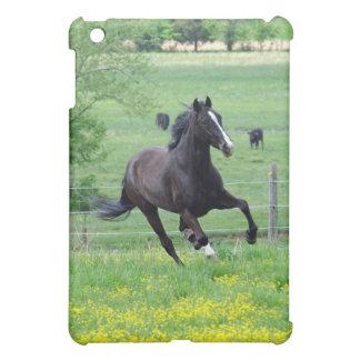 Spring Walker iPad Case
