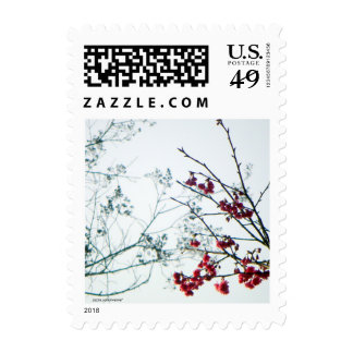 Spring Wedding/Event Cherry Blossoms Postage
