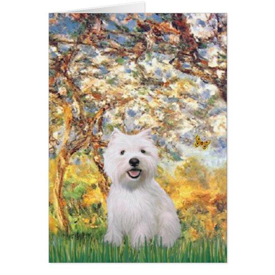 Spring - Westie 2 Card