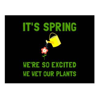 Spring Wet Plants Postcard