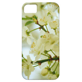Spring White Blossom Tree Photo iPhone 5 Case