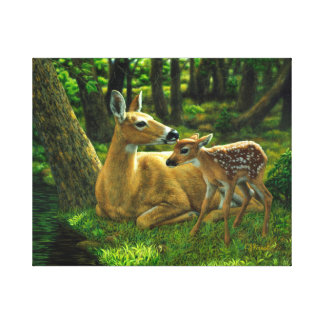 Spring Whitetail Doe and Fawn Stretched Canvas Prints