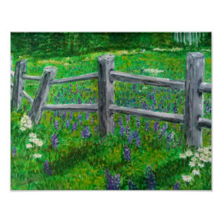 Spring wildflowers and a crooked fence poster