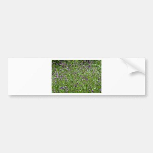 Spring Wildflowers Bumper Sticker