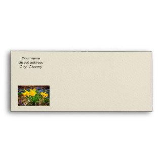 Spring wildflowers envelopes