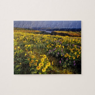 Spring wildflowers in abundance at the Tom Jigsaw Puzzles
