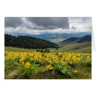 Spring Wildflowers In The Hills Cards