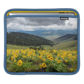 Spring Wildflowers In The Hills iPad Sleeve