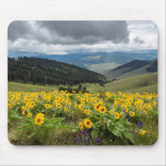Spring Wildflowers In The Hills Mouse Pad