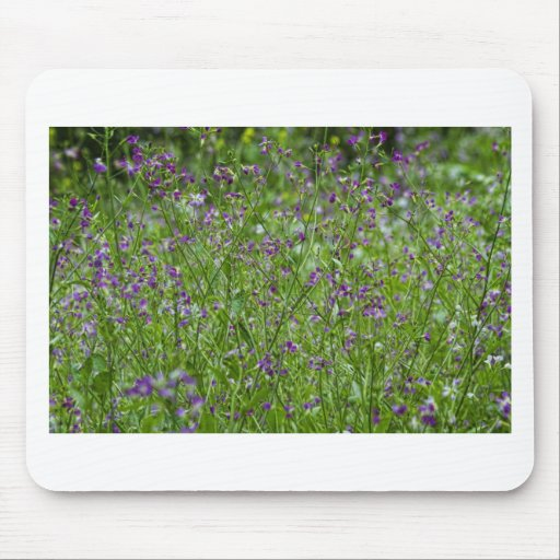 Spring Wildflowers Mouse Pad