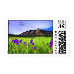 Spring Wildflowers Postage Stamps