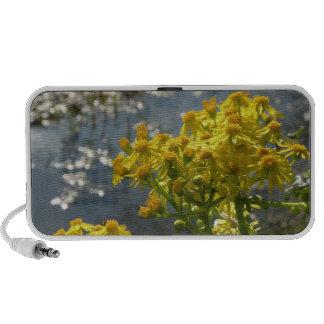 Spring Wildflowers Speaker