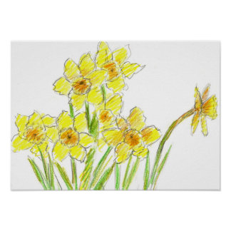 Spring Yellow Daffodil Garden Watercolor Drawing Poster