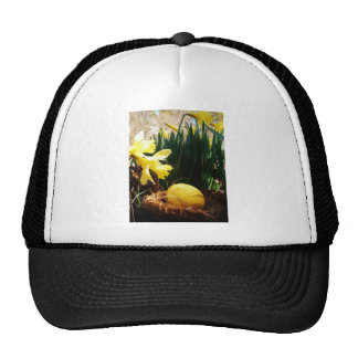 Spring Yellow Daffodils and a Yellow Easter egg Trucker Hat