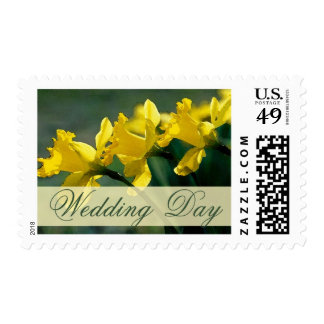 Spring yellow daffodils stamp