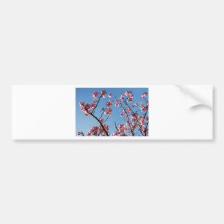 SpringBlossoms050109 Pegatina Para Auto