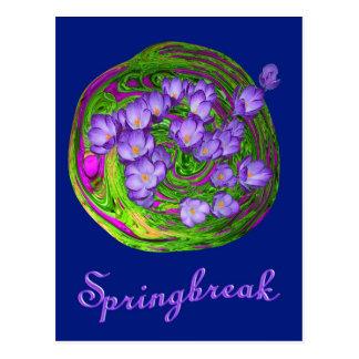 Springbreak blue postales