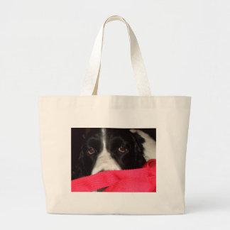Springer Eyes Bag