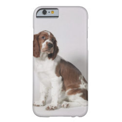 Case-Mate Barely There iPhone 6 Case with Springer Spaniel Phone Cases design