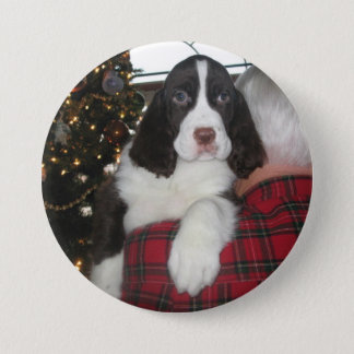 Springer Spaniel Christmas Pins