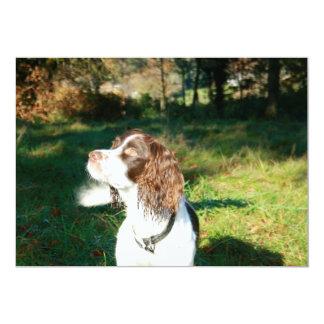 Springer Spaniel Dog Invitation