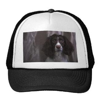 Springer Spaniel Dog Trucker Hat