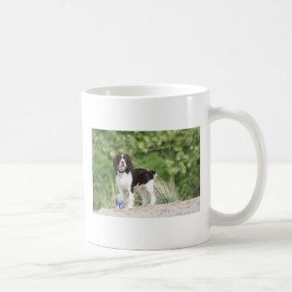 Springer Spaniel Puppy! Classic White Coffee Mug