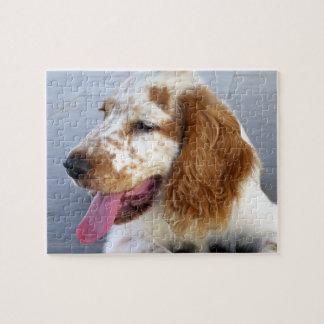Springer Spaniel Puppy  Puzzle