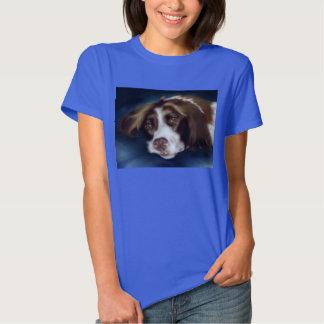 Springer Spaniel Shirt