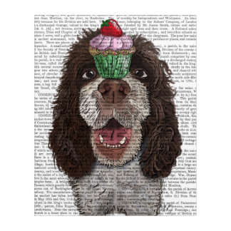 Springer Spaniel with Cupcake Acrylic Wall Art