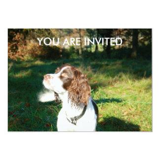 Springer Spaniel YOU ARE INVITED Invitation