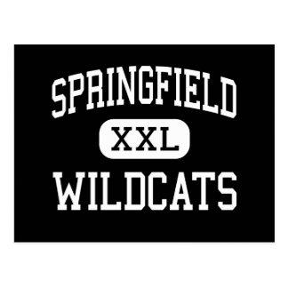Springfield - gatos monteses - joven - Bergholz Postales