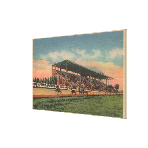 Springfield, IL - State Fair Grounds Horse Canvas Print