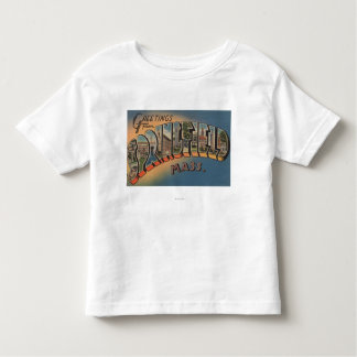 Springfield, Massachusetts - Large Letter 2 Toddler T-shirt